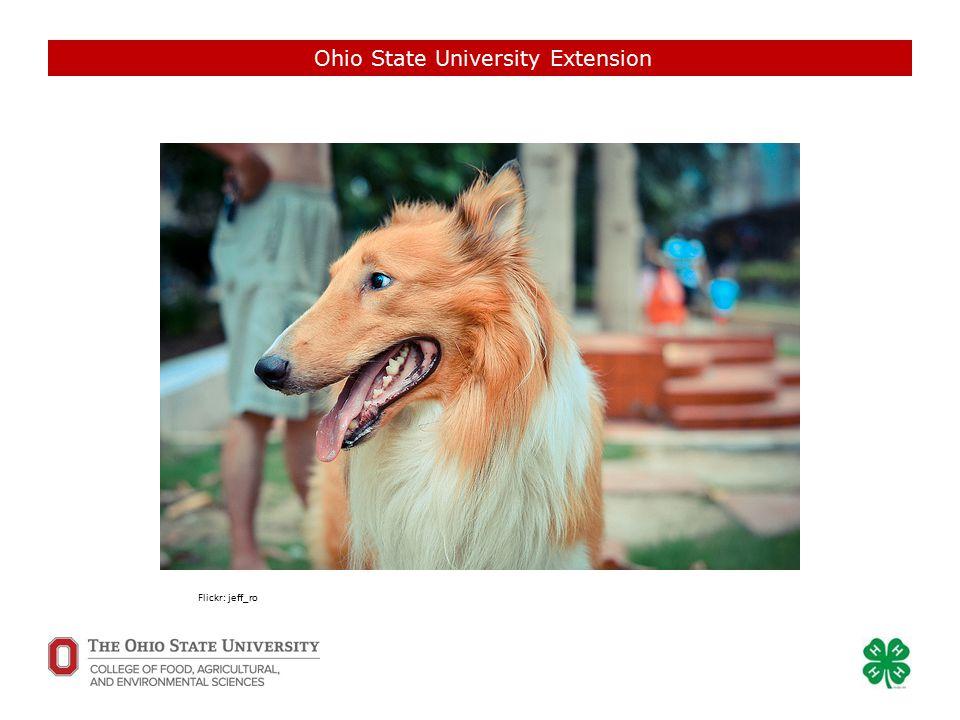 Ohio State University Extension Flickr: Chris Barker Flickr: akeg