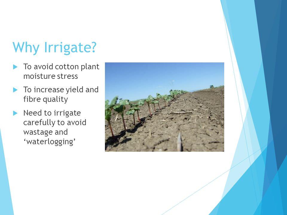 Why Irrigate.