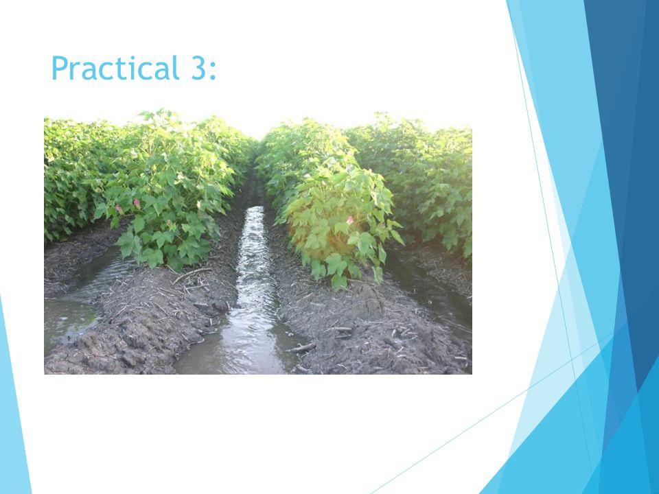 Practical 3: