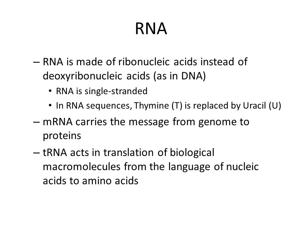 RNA – RNA is made of ribonucleic acids instead of deoxyribonucleic acids (as in DNA) RNA is single-stranded In RNA sequences, Thymine (T) is replaced by Uracil (U) – mRNA carries the message from genome to proteins – tRNA acts in translation of biological macromolecules from the language of nucleic acids to amino acids