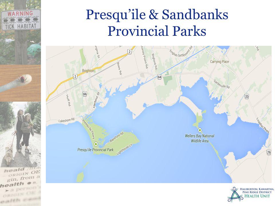 Presqu'ile & Sandbanks Provincial Parks