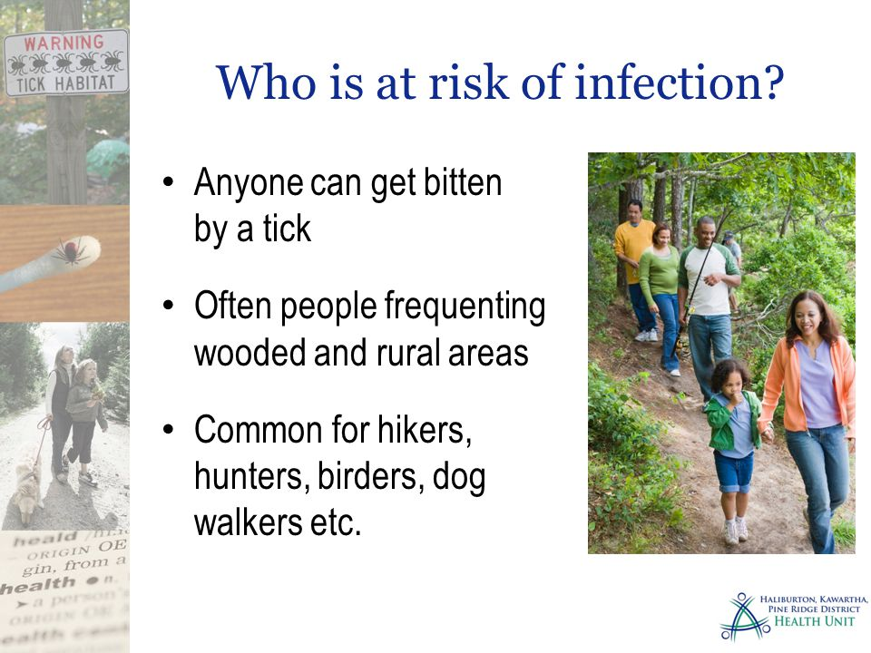 Who is at risk of infection? Anyone can get bitten by a tick Often people frequenting wooded and rural areas Common for hikers, hunters, birders, dog