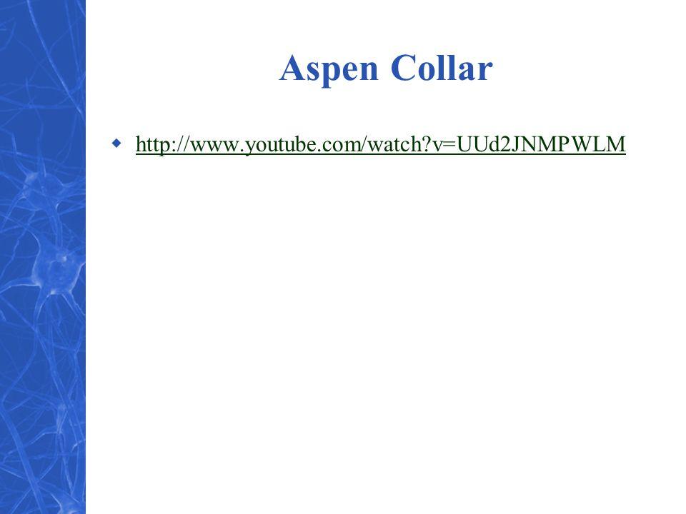 Aspen Collar  http://www.youtube.com/watch v=UUd2JNMPWLM http://www.youtube.com/watch v=UUd2JNMPWLM