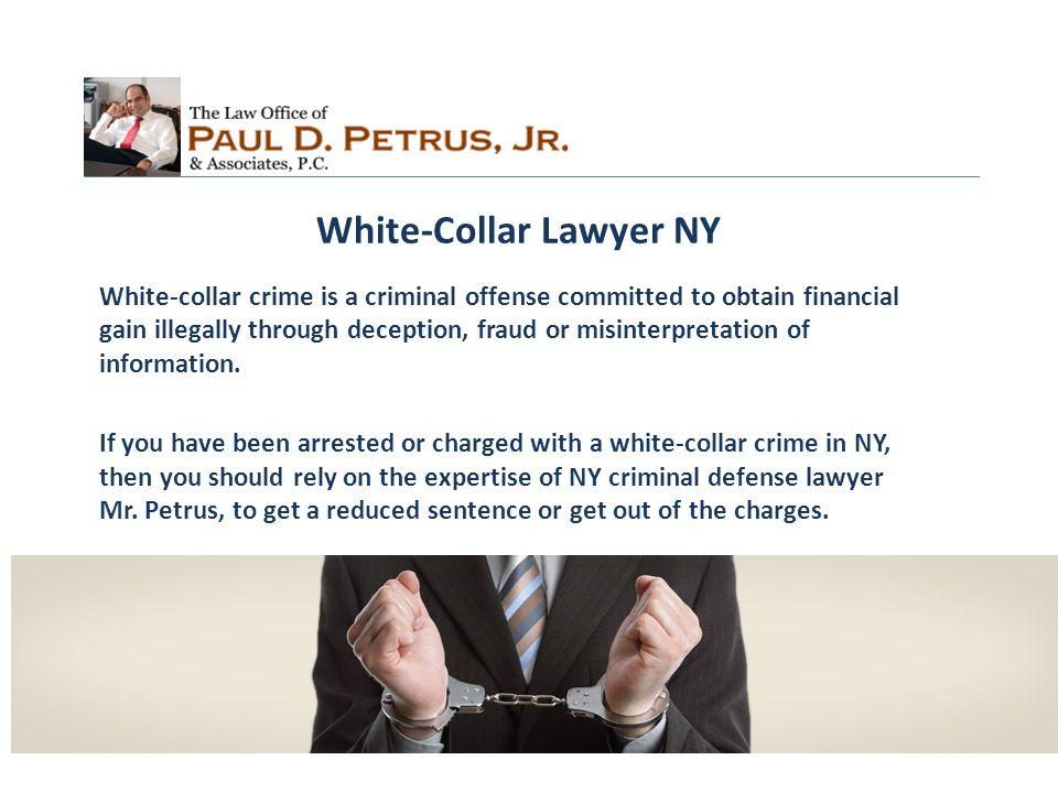 Contact Us: Paul D.Petrus, Jr.