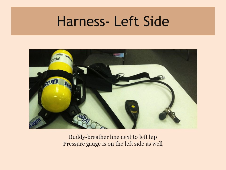 Harness- Left Side Buddy-breather line next to left hip Pressure gauge is on the left side as well