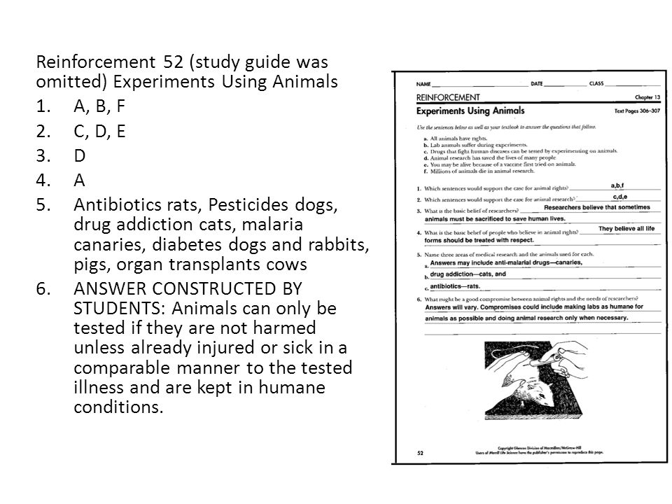 Reinforcement 52 (study guide was omitted) Experiments Using Animals 1.A, B, F 2.C, D, E 3.D 4.A 5.Antibiotics rats, Pesticides dogs, drug addiction c