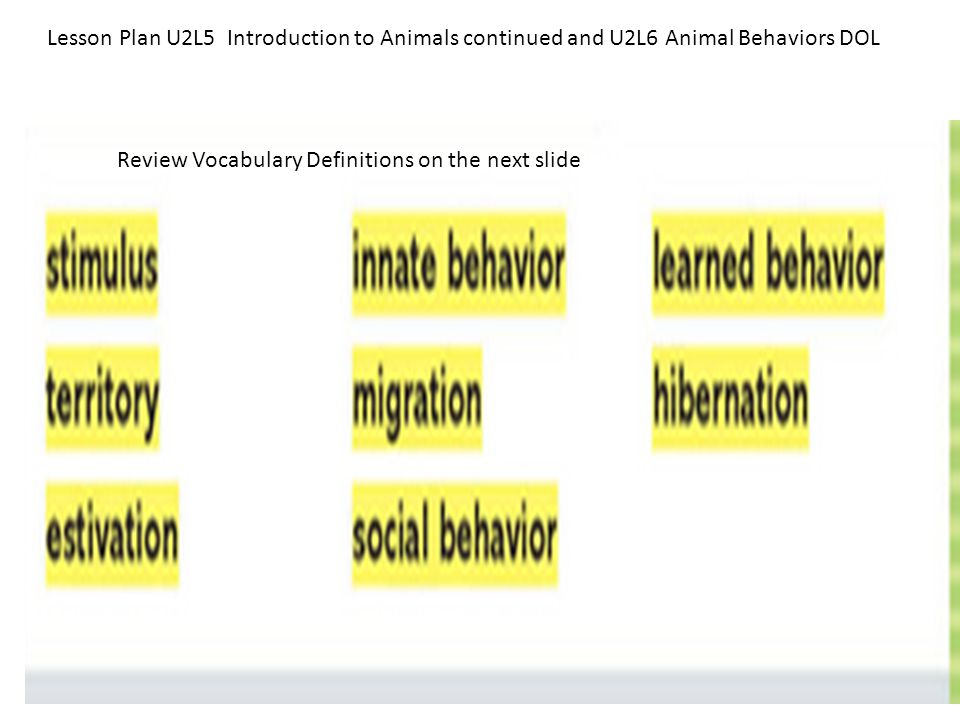Lesson Plan U2L5 Introduction to Animals continued and U2L6 Animal Behaviors DOL Review Vocabulary Definitions on the next slide