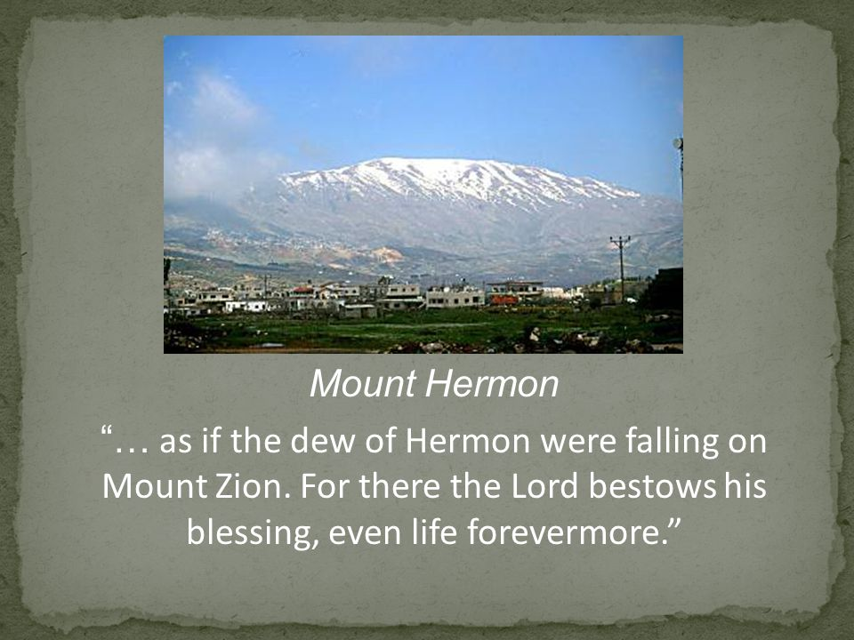 Mount Hermon … as if the dew of Hermon were falling on Mount Zion.