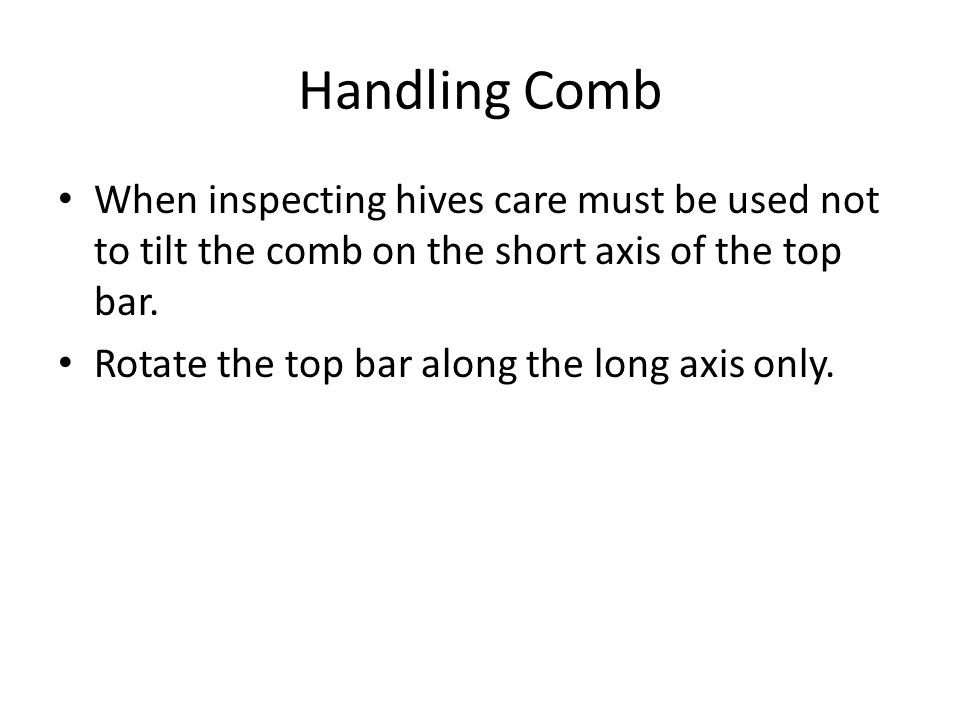 Handling Comb When inspecting hives care must be used not to tilt the comb on the short axis of the top bar.