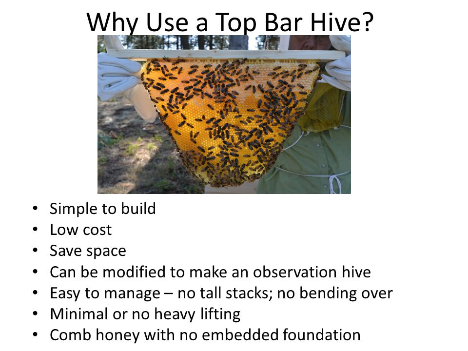 Why Use a Top Bar Hive.
