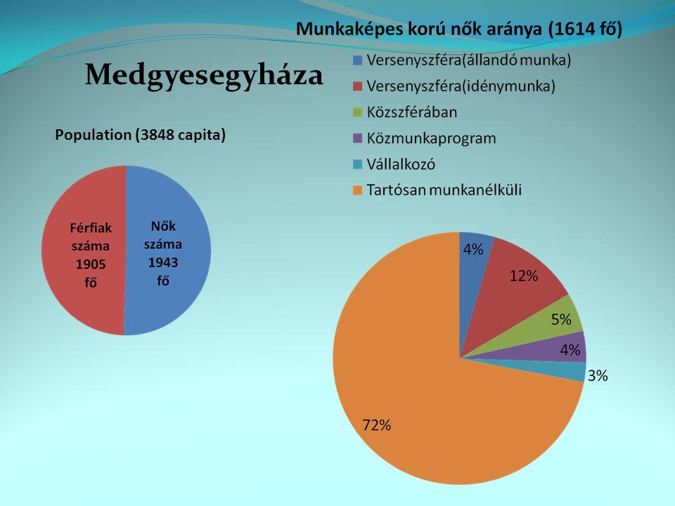 Population (3848 capita) Medgyesegyháza