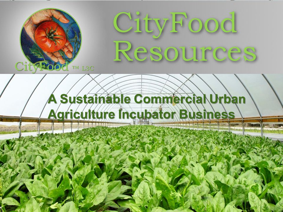 A Sustainable Commercial Urban Agriculture Incubator Business A Sustainable Commercial Urban Agriculture Incubator Business