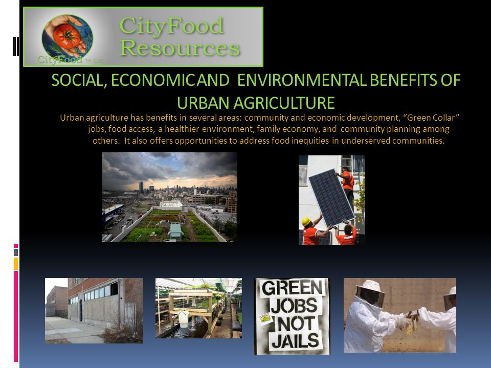 SOCIAL, ECONOMIC AND ENVIRONMENTAL BENEFITS OF URBAN AGRICULTURE Urban agriculture has benefits in several areas: community and economic development,