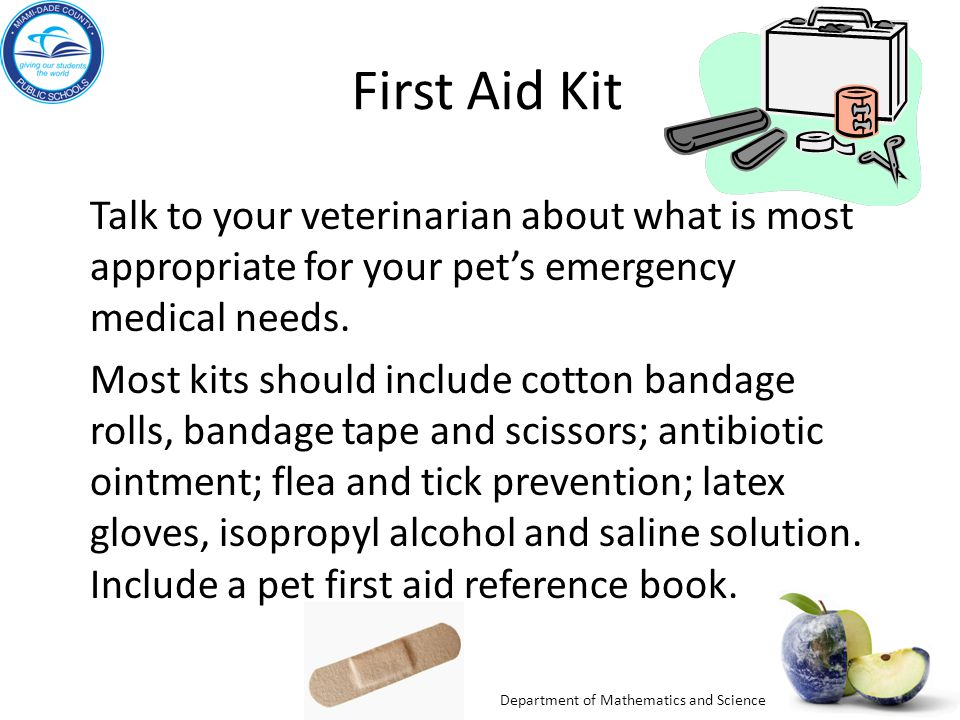 Department of Mathematics and Science First Aid Kit Talk to your veterinarian about what is most appropriate for your pet's emergency medical needs. M
