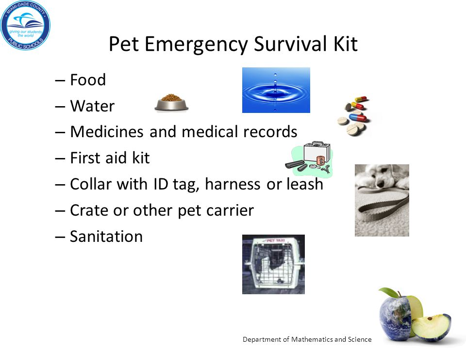 Department of Mathematics and Science Pet Emergency Survival Kit – Food – Water – Medicines and medical records – First aid kit – Collar with ID tag, harness or leash – Crate or other pet carrier – Sanitation