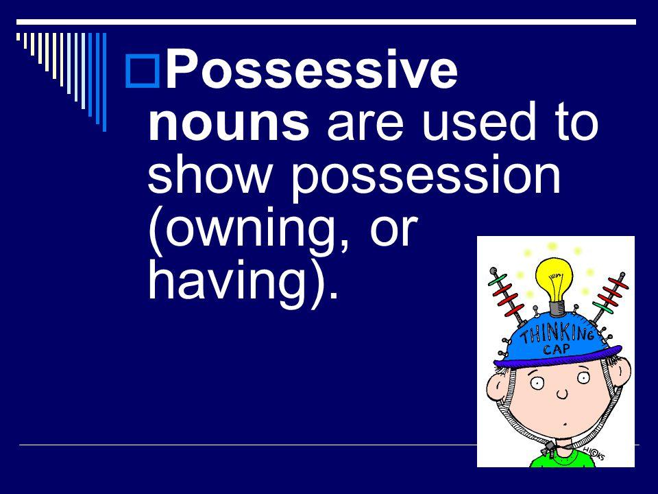 Possessive Nouns Project LA Activity