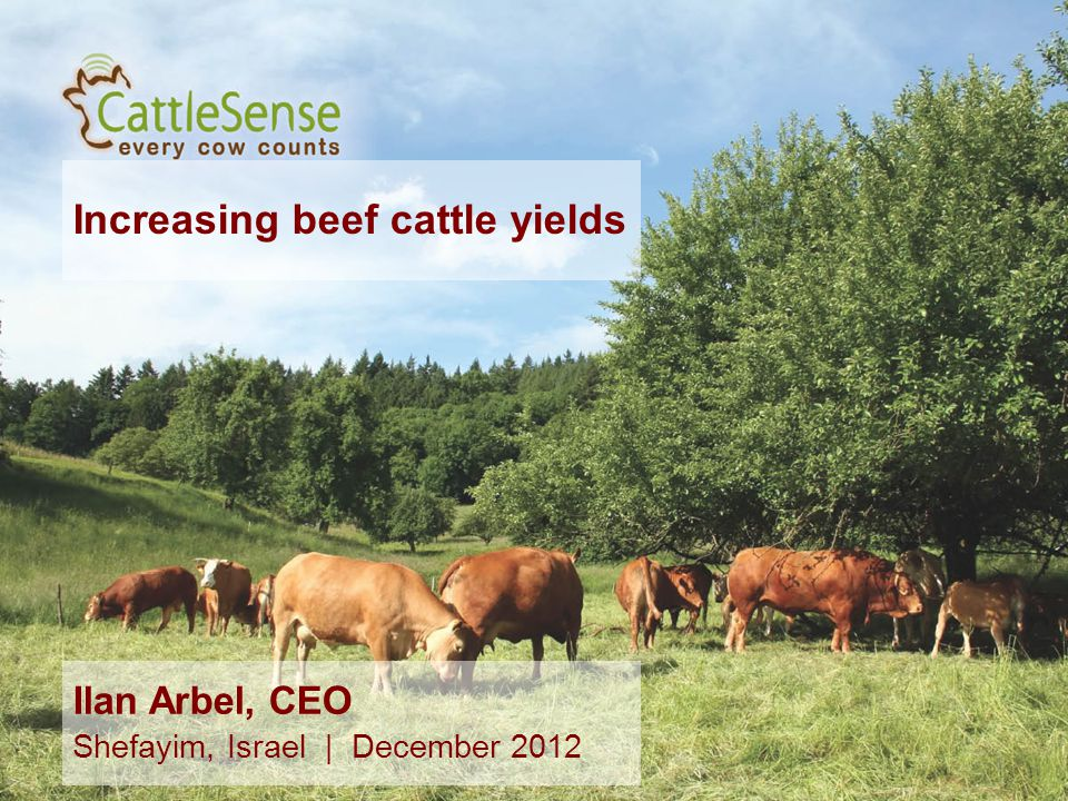 Increasing beef cattle yields 1 Ilan Arbel, CEO Shefayim, Israel | December 2012