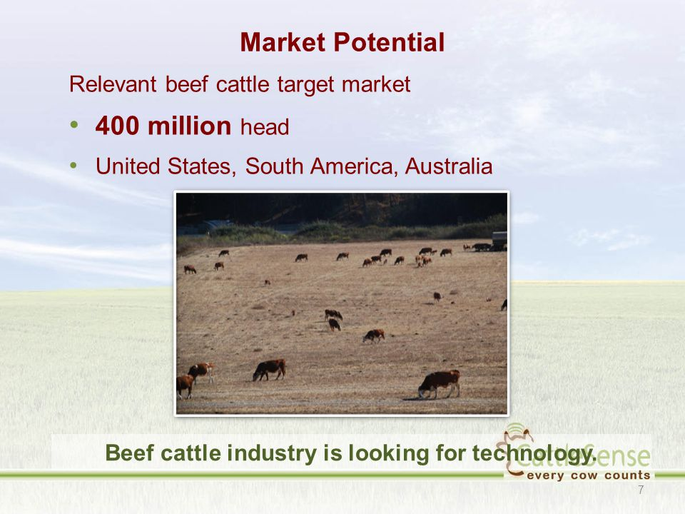Market Potential Relevant beef cattle target market 400 million head United States, South America, Australia 7 Beef cattle industry is looking for technology.