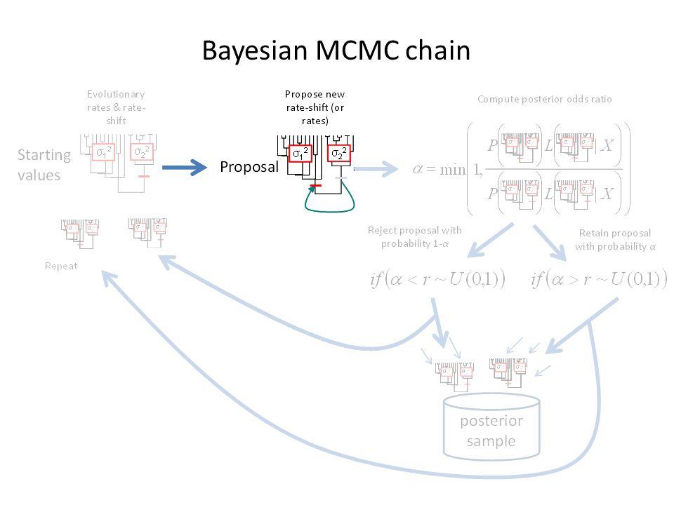 Bayesian MCMC chain