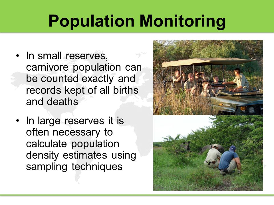 Population Monitoring In small reserves, carnivore population can be counted exactly and records kept of all births and deaths In large reserves it is often necessary to calculate population density estimates using sampling techniques