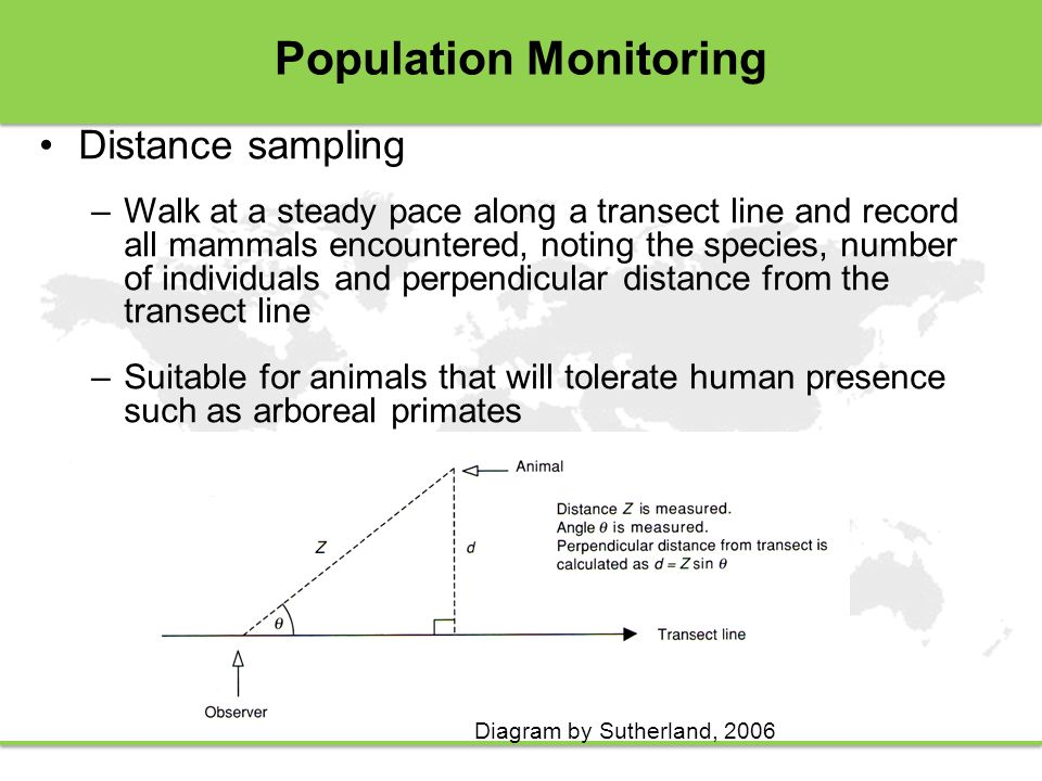 Population Monitoring Distance sampling –Walk at a steady pace along a transect line and record all mammals encountered, noting the species, number of individuals and perpendicular distance from the transect line –Suitable for animals that will tolerate human presence such as arboreal primates Diagram by Sutherland, 2006