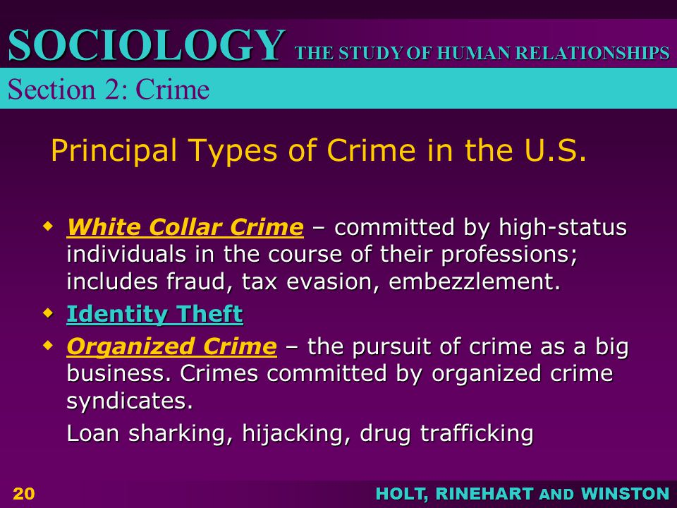 THE STUDY OF HUMAN RELATIONSHIPS SOCIOLOGY HOLT, RINEHART AND WINSTON 20 Principal Types of Crime in the U.S.