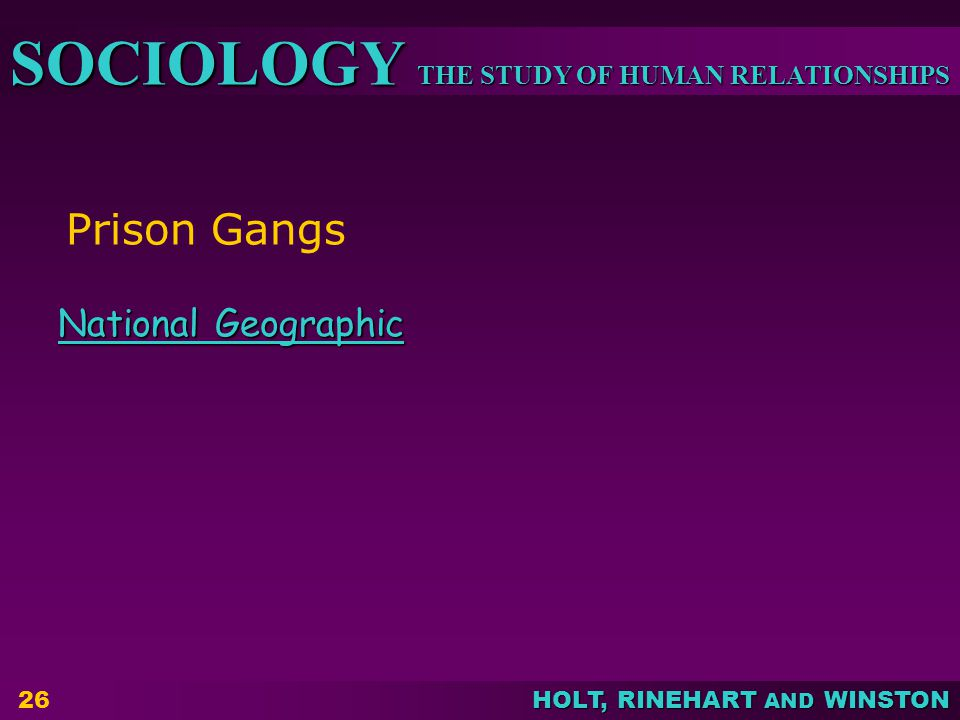 THE STUDY OF HUMAN RELATIONSHIPS SOCIOLOGY HOLT, RINEHART AND WINSTON Prison Gangs National Geographic National Geographic 26