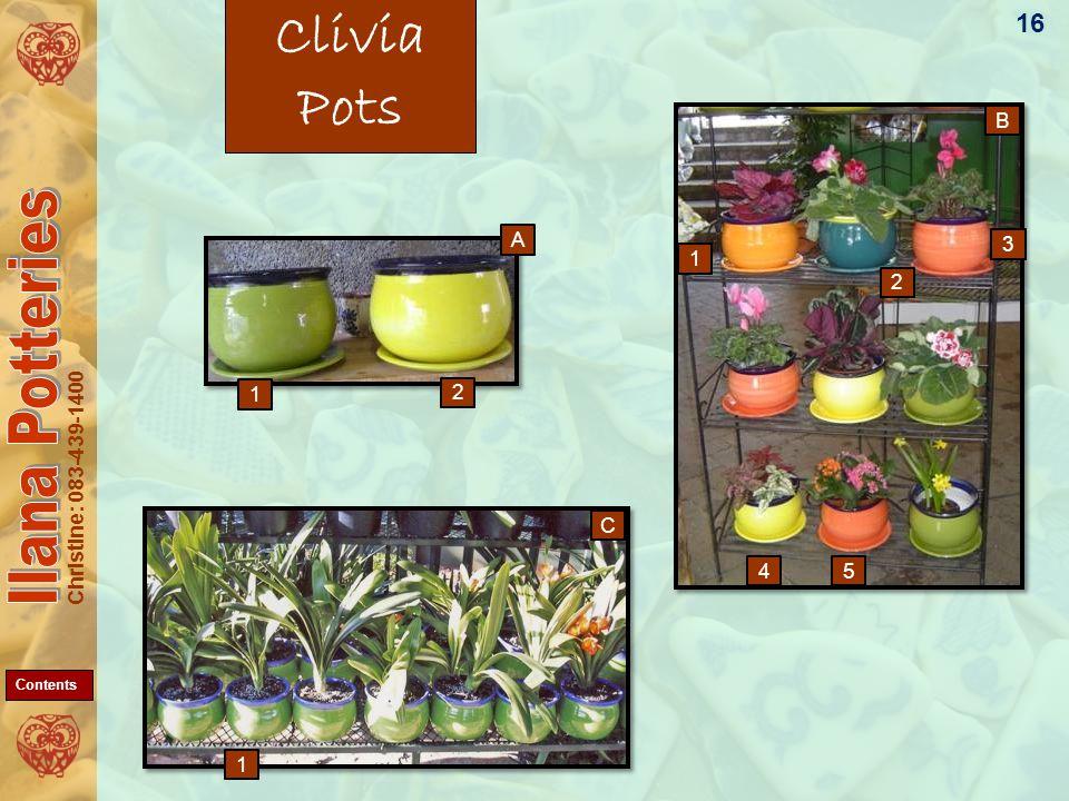 Christine: 083-439-1400 Clivia Pots 16 1 2 1 3 54 1 C A B 2 Contents