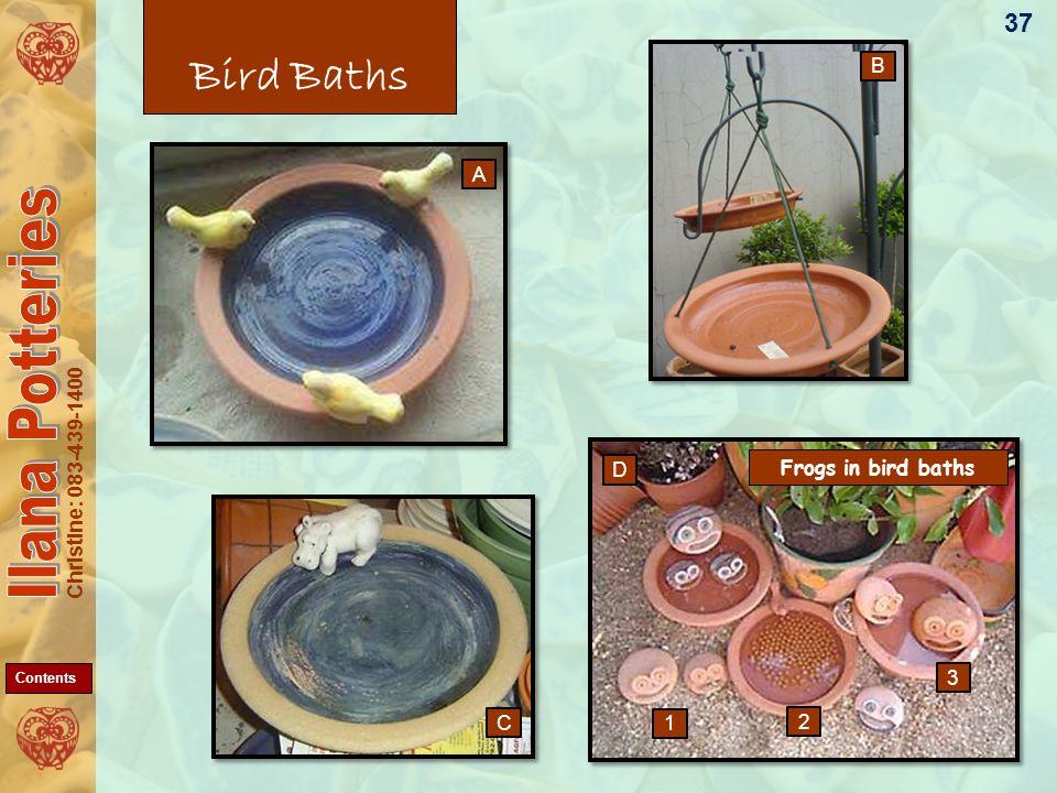 Christine: 083-439-1400 Bird Baths 37 A D C B 1 2 3 Frogs in bird baths Contents