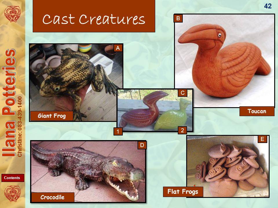 Christine: 083-439-1400 Toucan Cast Creatures Flat Frogs 42 A B E D Crocodile Giant Frog C 1 2 Contents
