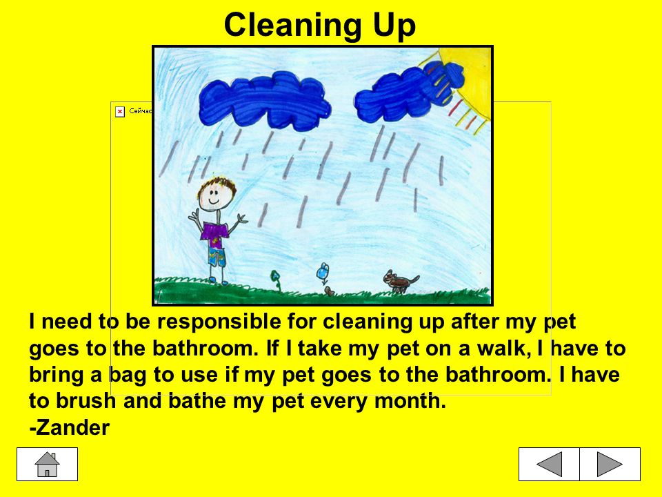 I need to be responsible for cleaning up after my pet goes to the bathroom.