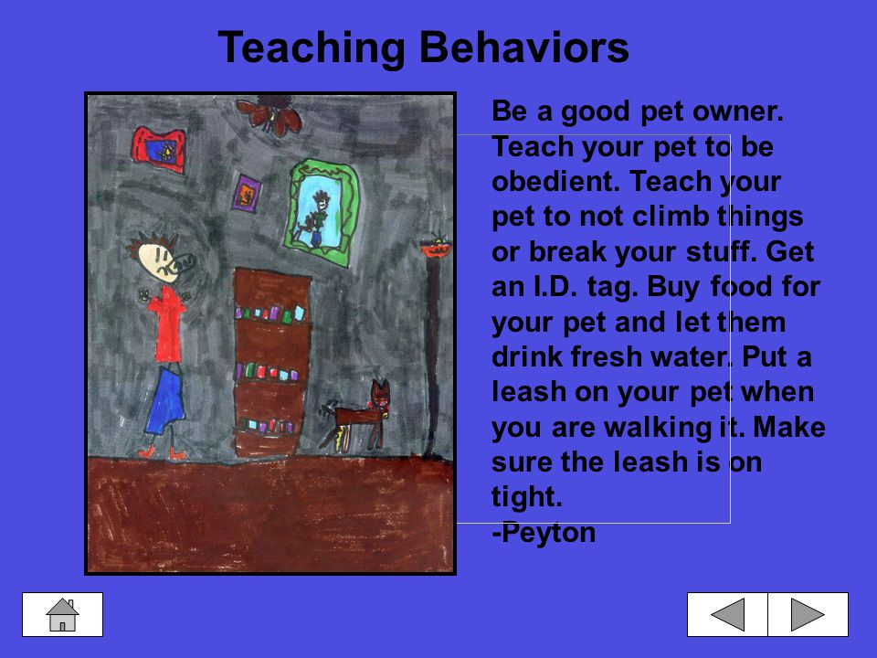 You should walk your pet on a leash so your pet will not run off.