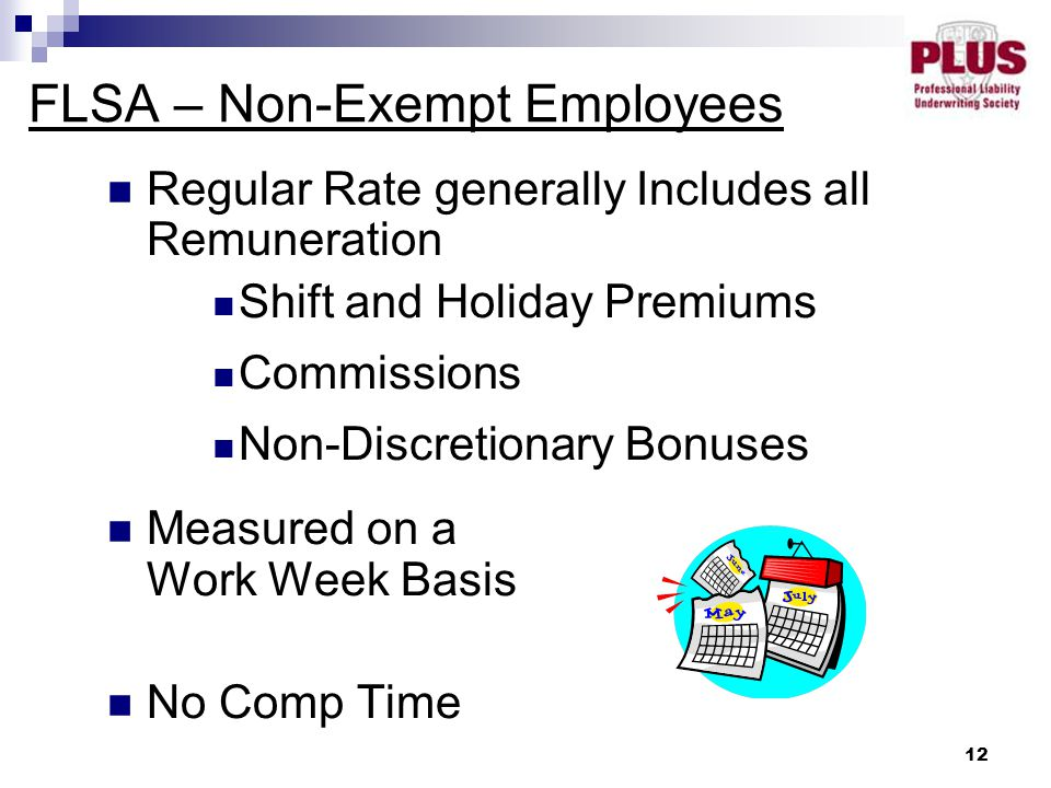 12 FLSA – Non-Exempt Employees Regular Rate generally Includes all Remuneration Shift and Holiday Premiums Commissions Non-Discretionary Bonuses Measured on a Work Week Basis No Comp Time