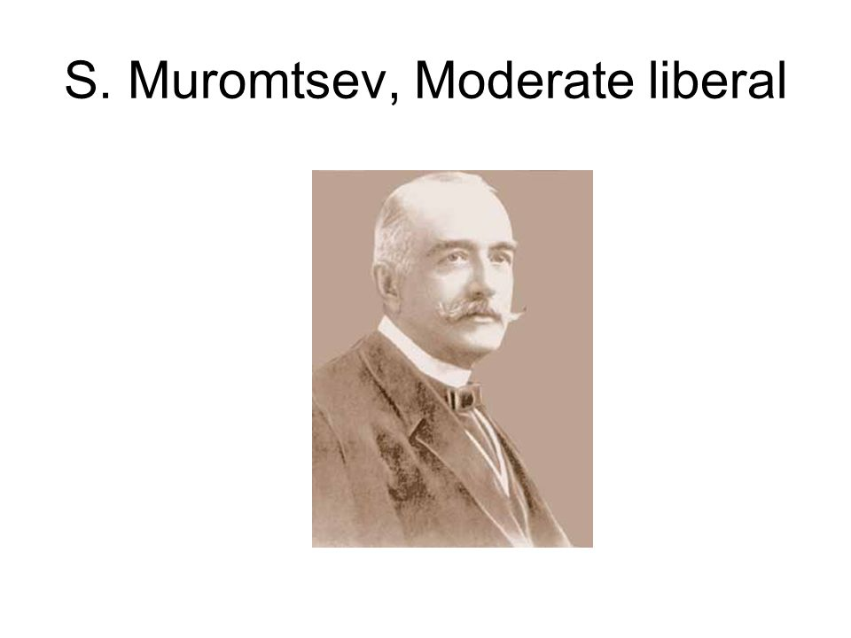 S. Muromtsev, Moderate liberal