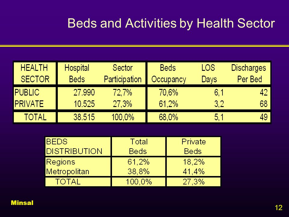12 Beds and Activities by Health Sector Minsal