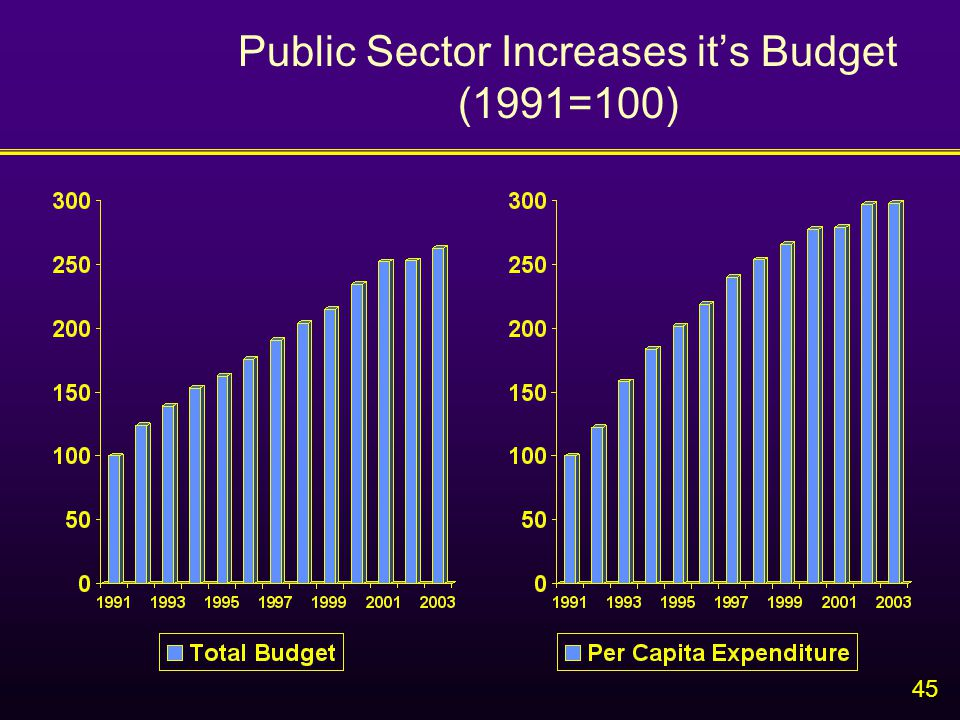 45 Public Sector Increases it's Budget (1991=100)