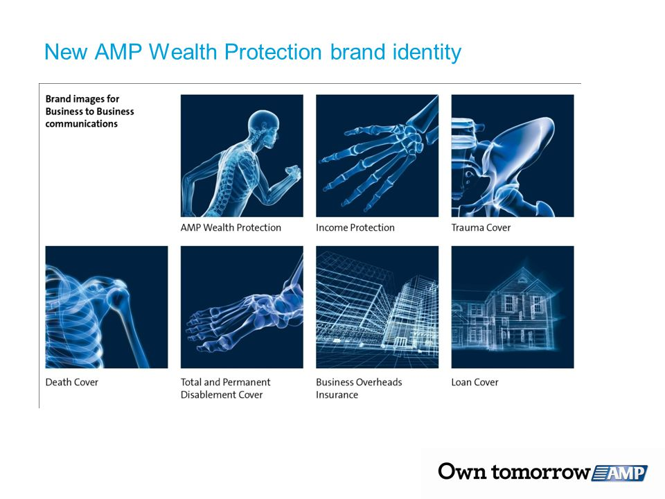 New AMP Wealth Protection brand identity