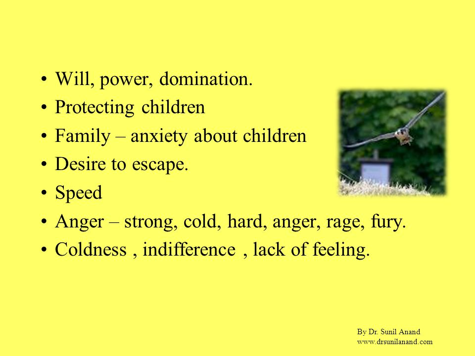 By Dr. Sunil Anand www.drsunilanand.com Will, power, domination. Protecting children Family – anxiety about children Desire to escape. Speed Anger – s