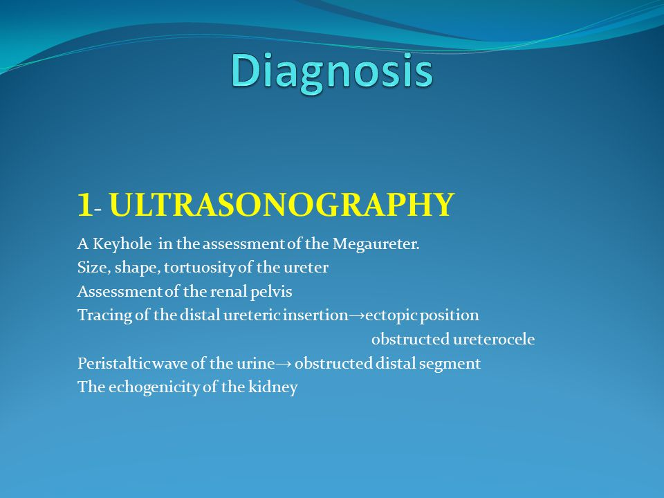 1 - ULTRASONOGRAPHY A Keyhole in the assessment of the Megaureter. Size, shape, tortuosity of the ureter Assessment of the renal pelvis Tracing of the