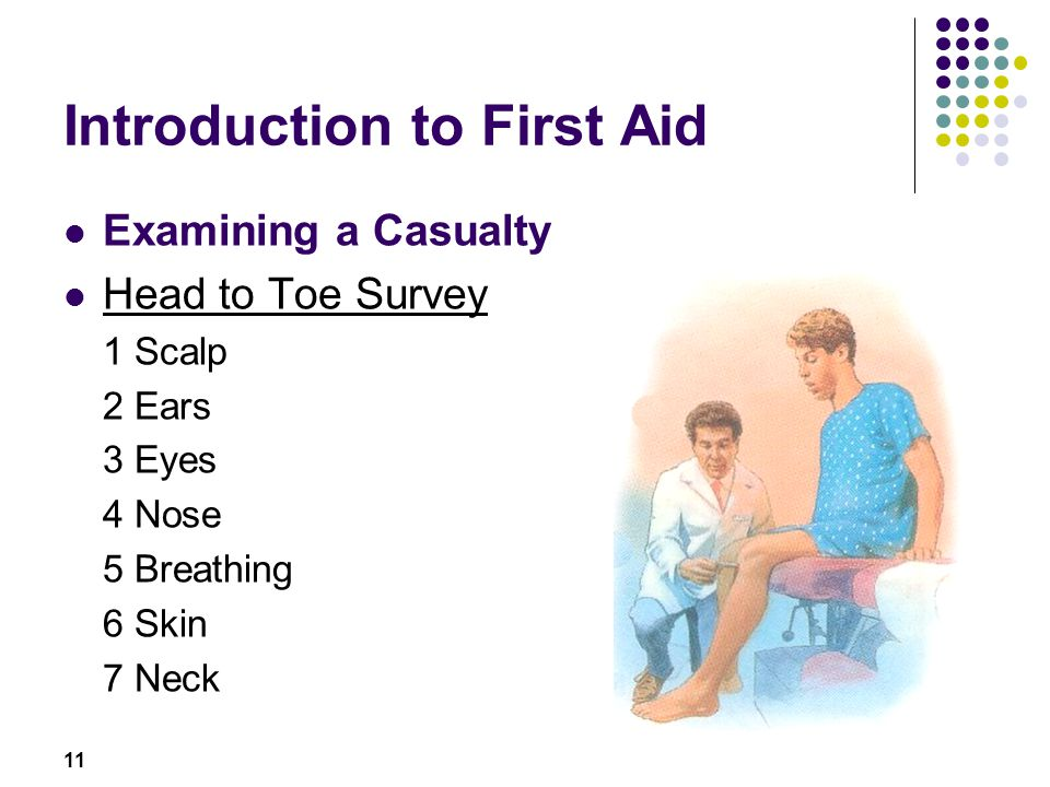 11 Introduction to First Aid Examining a Casualty Head to Toe Survey 1 Scalp 2 Ears 3 Eyes 4 Nose 5 Breathing 6 Skin 7 Neck