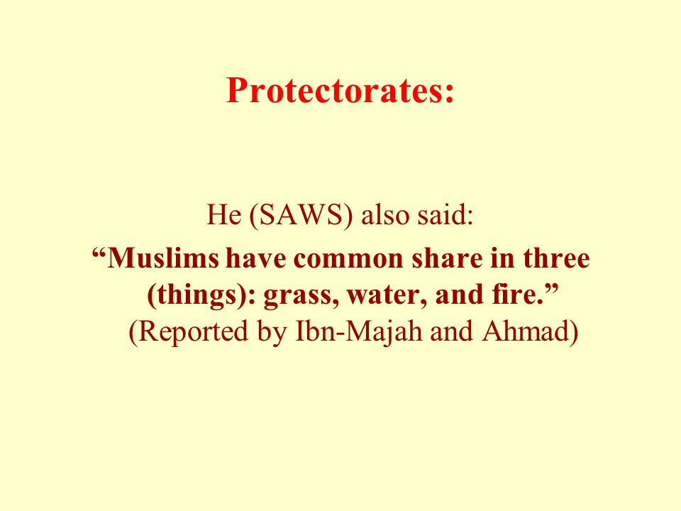 "Protectorates: He (SAWS) also said: ""Muslims have common share in three (things): grass, water, and fire."" (Reported by Ibn-Majah and Ahmad)"