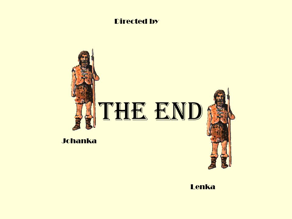 THE END Directed by Johanka Lenka