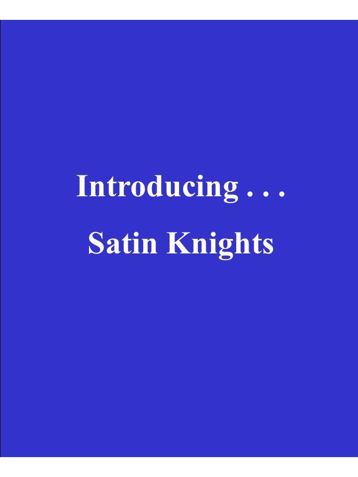 Introducing... Satin Knights