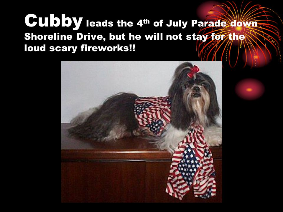 Cubby leads the 4 th of July Parade down Shoreline Drive, but he will not stay for the loud scary fireworks!!