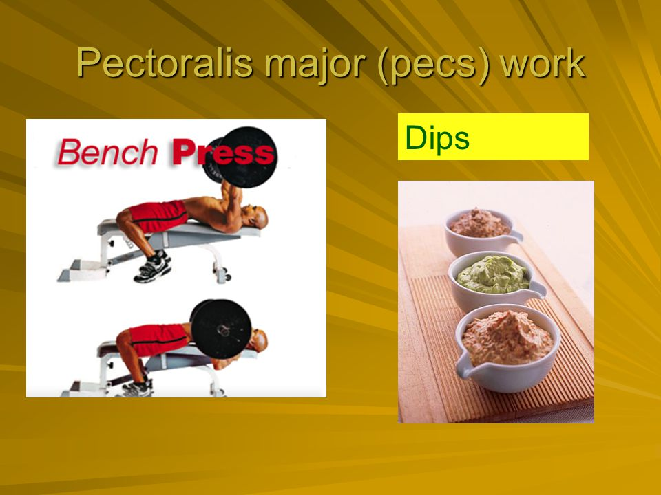 Pectoralis major (pecs) work Dips