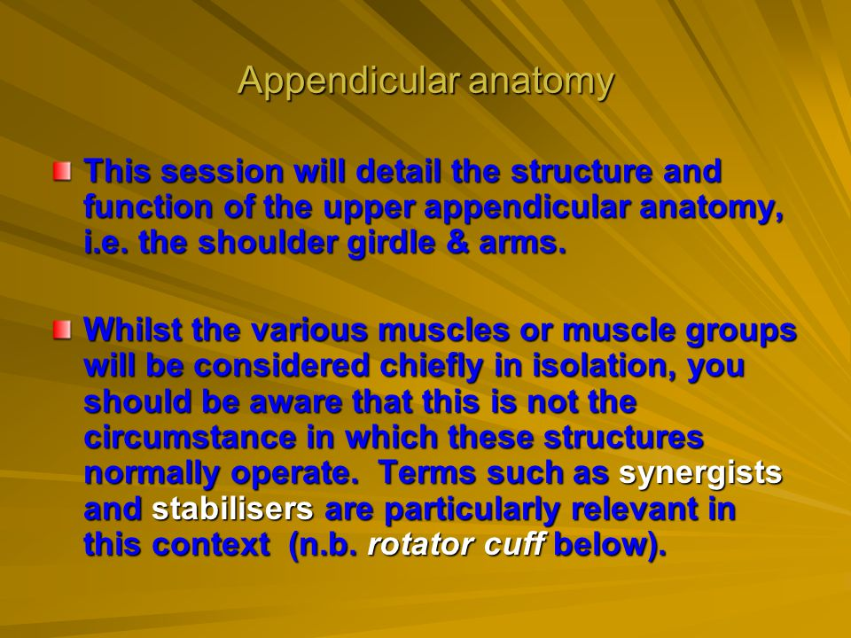 Appendicular anatomy This session will detail the structure and function of the upper appendicular anatomy, i.e. the shoulder girdle & arms. Whilst th