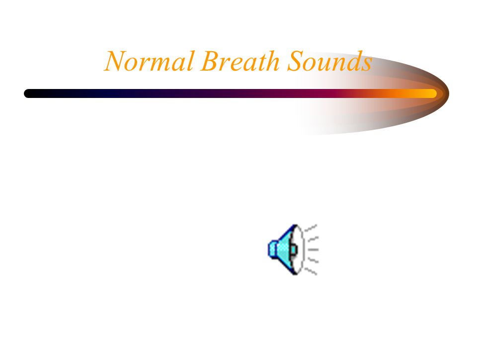 Normal Breath Sounds