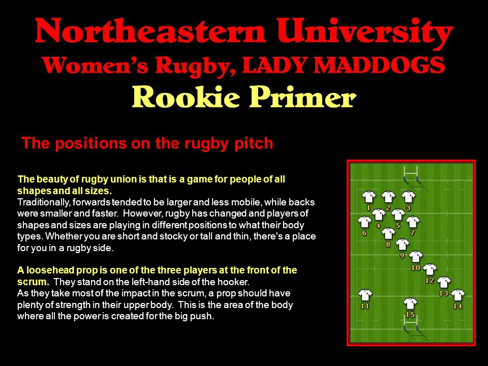The positions on the rugby pitch The beauty of rugby union is that is a game for people of all shapes and all sizes.