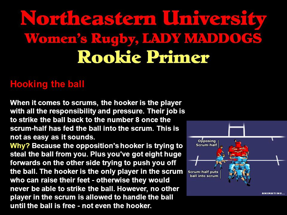 Hooking the ball When it comes to scrums, the hooker is the player with all the responsibility and pressure.