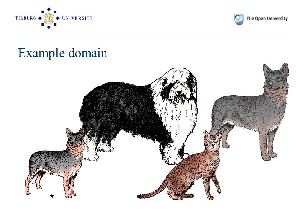 Example domain **